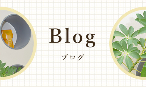気まぐれブログ